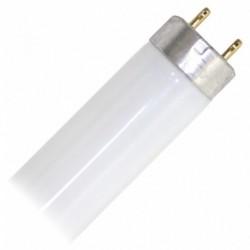 T8 G13 Fluoro 18W Warm White