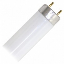 T8 G13 Fluorescent 18W Day Light