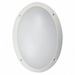 White Cool White Oval